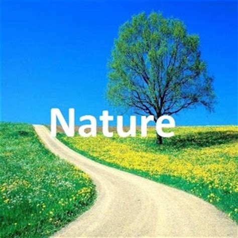 google images nature nature wallpaper android apps on google play