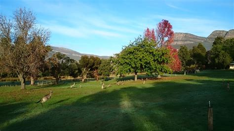 The Green Kitchen Stories - grampians paradise camping and caravan parkland caravan park holiday accommodation in australia