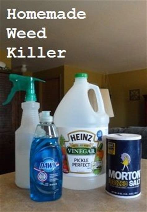 1000 images about homemade weed killer on pinterest