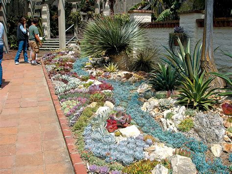 Outdoor Succulent Garden by Pacific Horticulture Society A Succulent Oasis At
