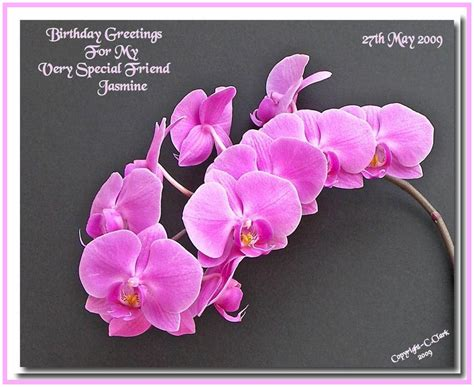 Special Birthday Cards Special Birthday Greetings