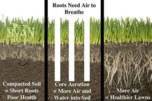 the benefits of aeration ryan lawn tree