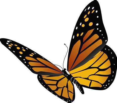 clipart farfalla clipart butterfly