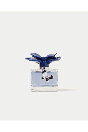 Parfum Zara Dandelion marca perfumes de senhora compare pre 231 os e compre