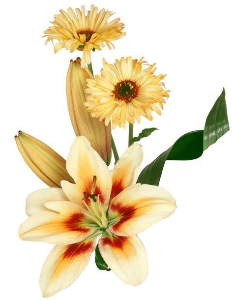 imagenes de flores variadas gifs y fondos pazenlatormenta im 193 genes de flores variadas
