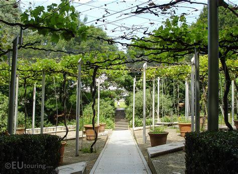 Treille Jardin by Hd Photos Of Jardin De La Treille Vineyard Inside Parc De