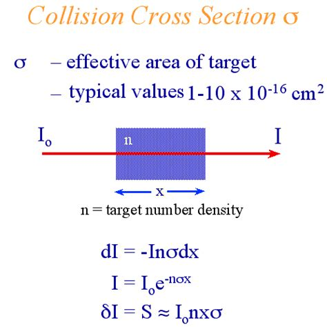 definition of cross section cross section definition