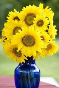 Wedding Vase Sunflowers In A Blue Vase Kort Og Billeder