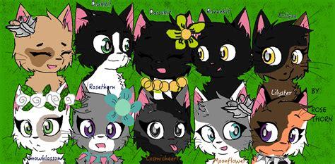 image warrior cats willowclan base mia png animal jam