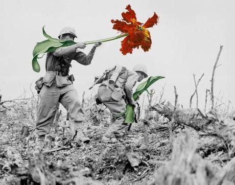 fiori nei cannoni mettete dei fiori nei vostri cannoni paperblog