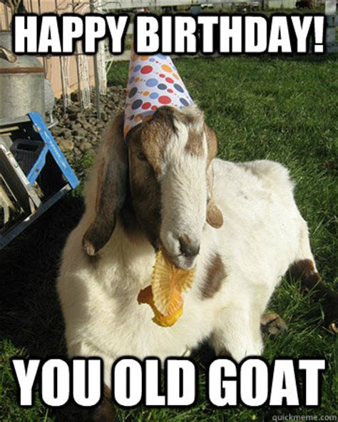 Happy Goat Meme - happy birthday you old goat pinteres