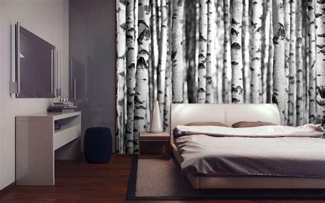 fotos auf tapete kleben forests birkenwald foto tapete foto tapeten 315x232