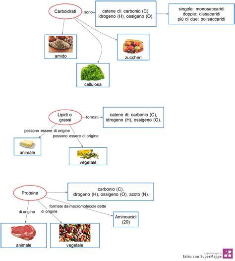 alimenti proteine carboidrati grassi proteine a scuola si impara