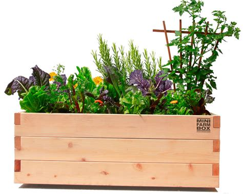 Rolling Planter Boxes by Rolling Garden Planters For Patios And Balconies Minifarmbox