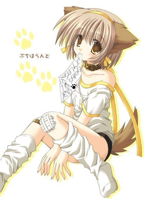 neko anime girl characters neko neko anime characters photo 6931966 fanpop