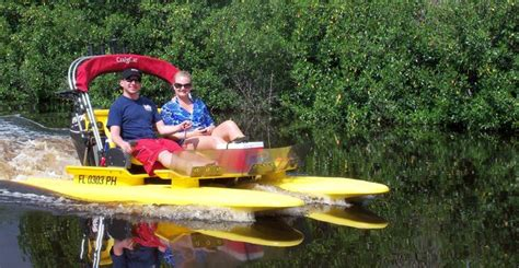 sw boat tours in florida 80 best images about sw florida tours on pinterest