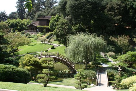 Huntington Botanical Gardens Huntington Library And Botanical Gardens Iamnotastalker S Weblog