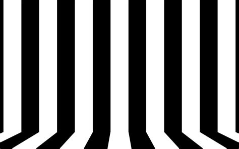 black white black and white lines www pixshark com images