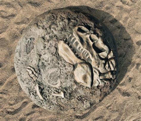 sensory play fossil dig playground sandbox landscape