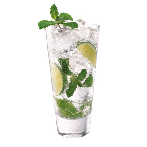 Majito Mint Fo Syrup Sirup Mocktail herradura tequila mojito cocktail recipe