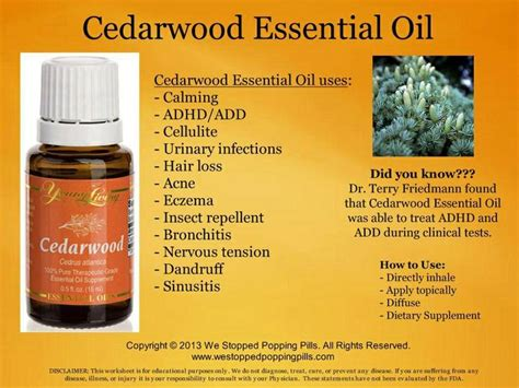 Youngliving Essential Cedarwood 15ml 33 best images about cedarwood living on anxiety my hair and skin