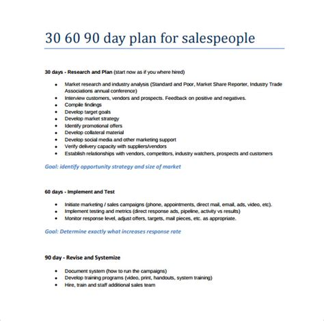 sales manager business plan template sle 30 60 90 day plan 11 exle format