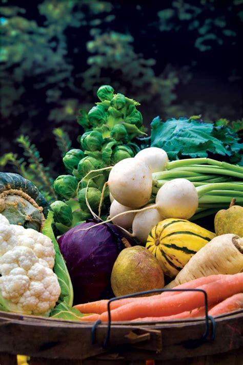 Vegetable Garden Blogs Monitor Plant Fall Vegetable Garden