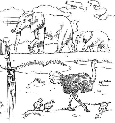 coloring pages san diego zoo zoo coloring pages coloringpages1001 com