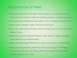 Image result for how trees are useful to us essay