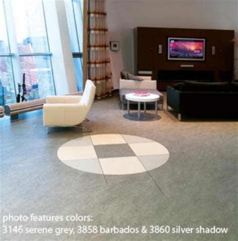 marmoleum the eco floor store eco floor store marmoleum floors for residential and