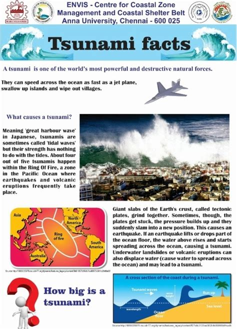 facts and information facts about tsunamis the best fact in 2018