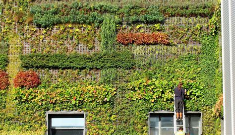 giardino verticale giardini verticali moda e tendenze gesal it