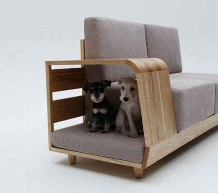 Pet Friendly Sofa by Pet Friendly Sofa For The Home