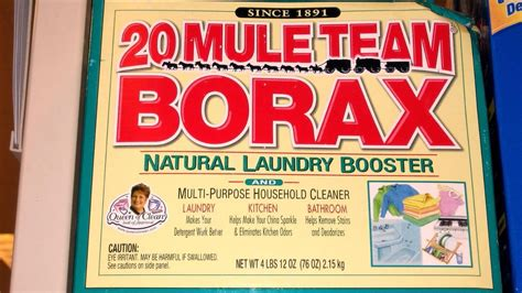 is borax safe for dogs what is a substitute for borax reference
