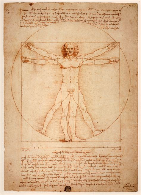 leonardo da vinci biography and works astonishing drawings paintings by leonardo da vinci