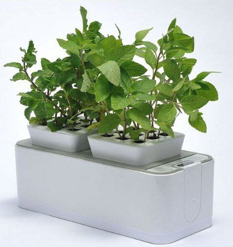 watering indoor gardens hydroponics system