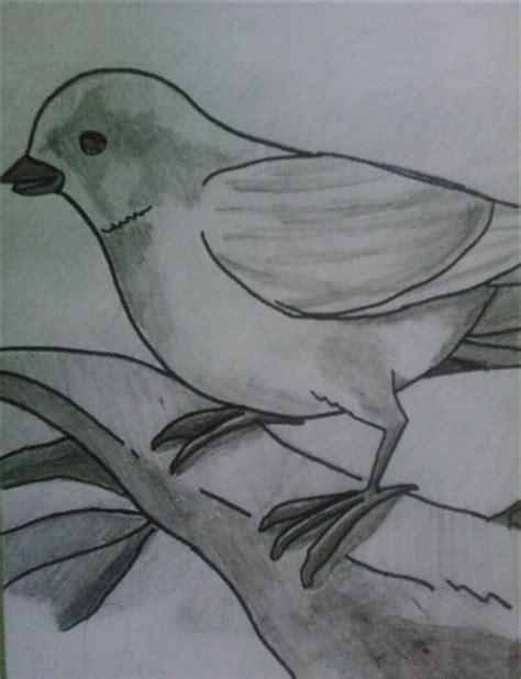 imagenes para dibujar a lapiz sombreado dibujos a lapiz para principiantes dibujos a lapiz