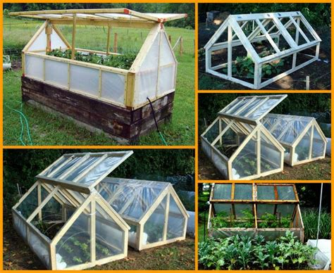 building a greenhouse plans build your very own build your own mini greenhouse woodworking projects plans