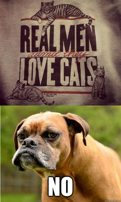 Grumpy Dog Meme - grumpy dog memes quickmeme