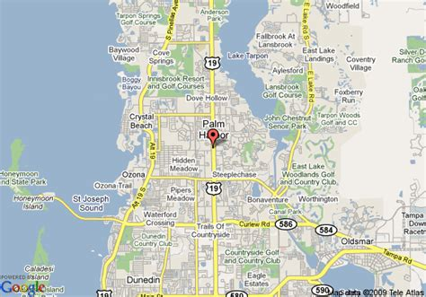 palm harbor about palm harbor florida pictures to pin on