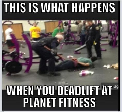 Gym Humor Memes - it s true i get called a quot lunk quot in the quot judgement free
