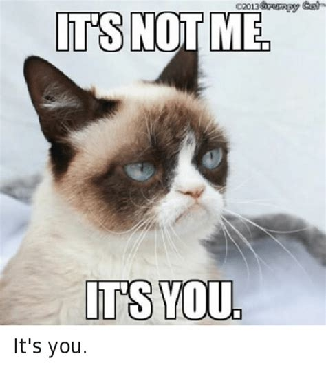 Its Not Me its not me its you it s you grumpy cat meme on sizzle
