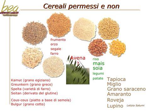 alimenti permessi ai celiaci la celiachia nuova sfida per l artigianato alimentare