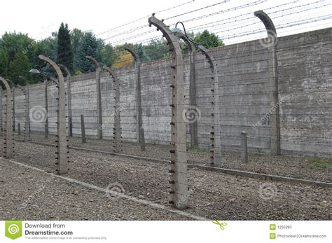 electric fence wire barbed wire electric fence editorial stock photo image of