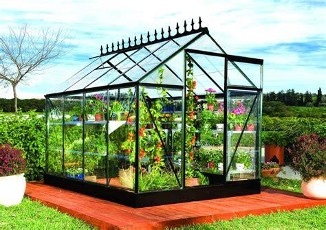 pour serre de jardin bons plans jardinage profitez d une serre de jardin pas cher pour cultiver toute l 233 e