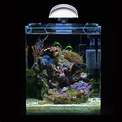 nano aquarium beleuchtung nano cube dennerle complete plus 30 litres pictures to pin