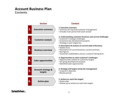 management section of business plan salesdriver account business plan