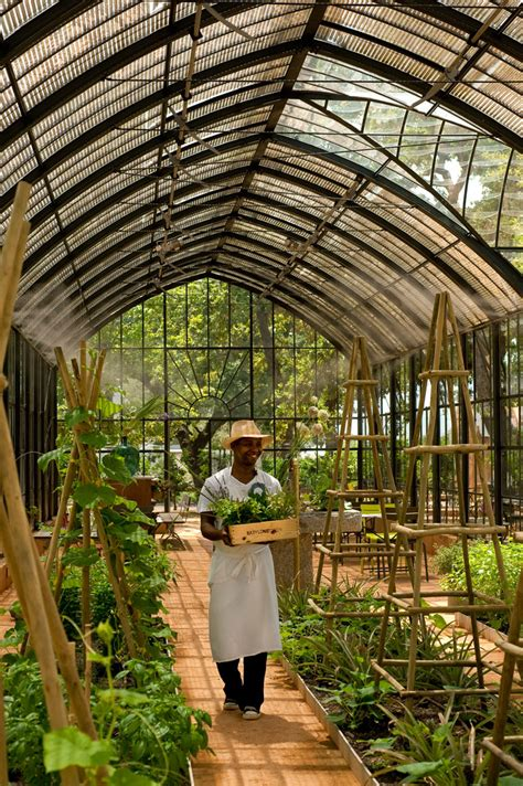 Big Greenhouses by I Of A Farm In Africa