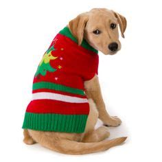 petsmart sweaters 1000 images about s closet on atlanta braves mlb and pet holidays