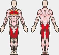 kettlebell swing muscles used burpees die richtige ausf 252 hrung uebungen ws